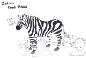 ZEBRA ROAD RAGE by sakura-raven-fan