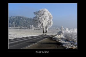 Along the road by tomsumartin
