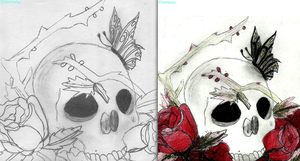 roses and skull :non coloured and coloured by IamNasher