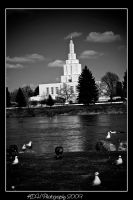 Idaho Falls Temple 3 by artisticallylearning