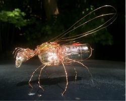 Fender Tube Bug by SUSHIDIGITAL