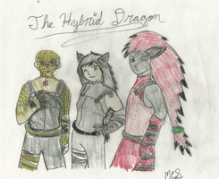 The Team~ Request for elemental-wyvern by CutePoochyena261