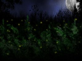 Night Fireflies by LarryDNJR