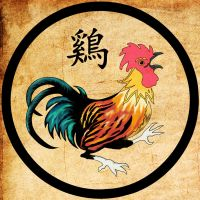 Rooster by WildFire6660