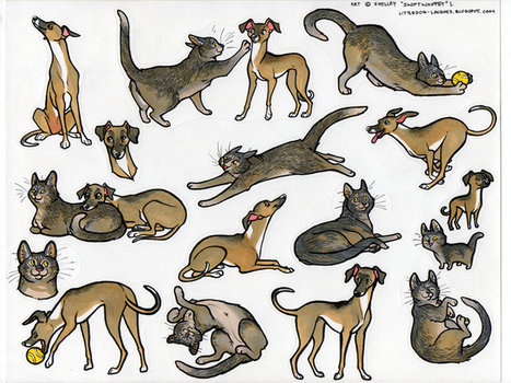 stickercustom: Bella and Gizmo by swift-whippet