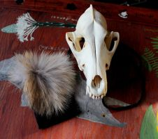 Coyote and Leather Pouch by lupagreenwolf