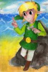 Toon Link by DynamicFlamez