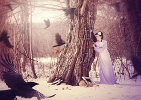 winter stories CROWS by LilifIlane