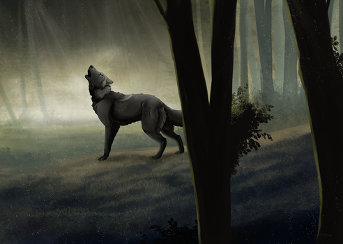 Searching by Cylithren
