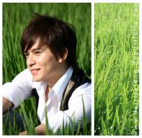 paddy field and me by derrickfong