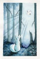 White fox in bright night by MiaErrianIrielynn
