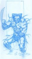 Wolverine naked by IwanNazif