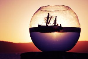 Fish Bowl by Boeing747