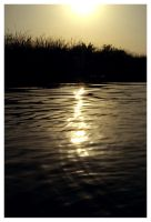 Tisza to sunset by siby