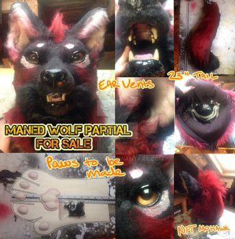 Semi-Realistic Maned Wolf Partial SOLD by Yuki-Moon