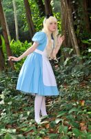 Alice in WonderLand - Searching for the rabbit by TenchiMuyou