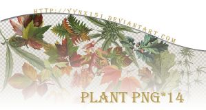 Plant png pack #01 by yynx151