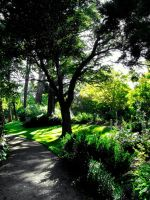 Green gardens by mark-flammable