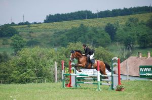 ShowJumping by SecretRider