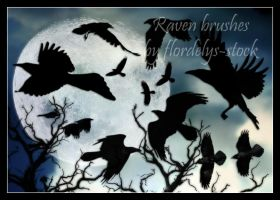 Raven Brushes by flordelys-stock