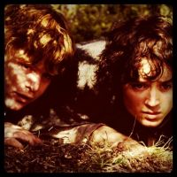 Sam and Frodo by aD-1990