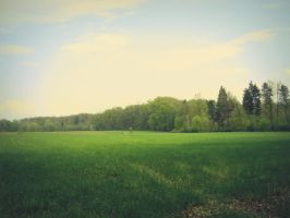 Vintage field by L-JustinePhotography