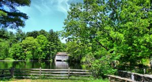Stock Pond Bridge Background by Moon-WillowStock