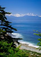 Fort Ebey by StephGabler