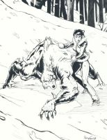 Pencils: Winter Wolves by studiomia