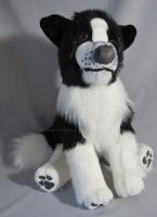 Border Collie Plush by AnimalArtKingdom