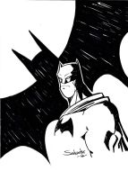 Batman 21 by Salvador-Raga