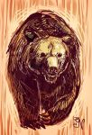 Grizzly Bear by MIRRORMASTER