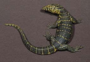 16. NILE MONITOR-Miniature Sculpture -Polymer Clay by AllanSutherland