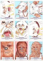Star Wars Galactic Files Series 2 Sketch Cards 01 by Tyrant-1