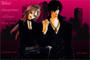 Skip Beat for NakedOrangie by Satinels