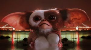 Gizmo In Throgs Neck by bobbyboggs182