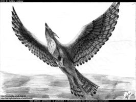 10.02 flying griffin by axe-ql