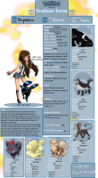 Turquoise - Info Sheet by destinywolf102