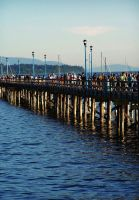 The Pier. by Bleezer