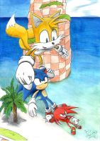Sonic Heroes - Seaside Hill by x723