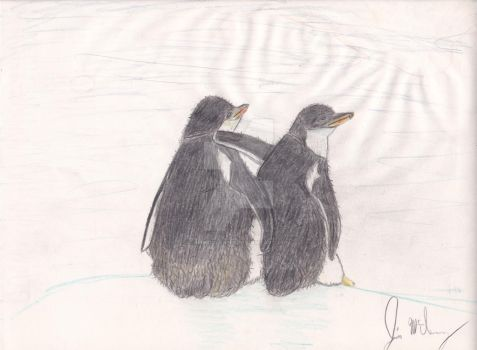 Penguins 2 by jimmcclenny