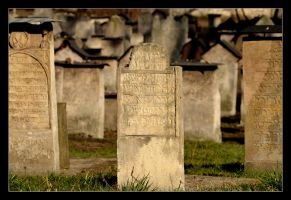 The Cemetery At The Remuh Synagogue In Cracow - 1 by skarzynscy