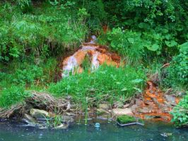 Babbling Brook by KayleighBPhotography