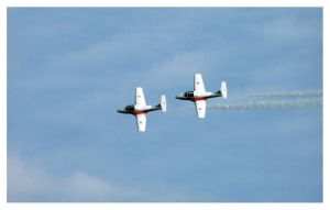 Snowbirds 1 by Bleezer