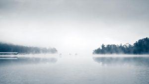 Mist by Alyphoto