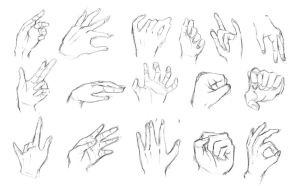 Hand exercises by Calvariae