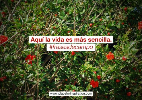 Frases de campo 2 by jaumeestruch