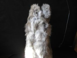 Rabbit Fur 38 by TRANS4MATICA
