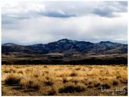 Another Wyoming Landscape by loathsome-weasel