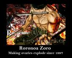 Roronoa Zoro Demotivation poster by CanadianGothStalker